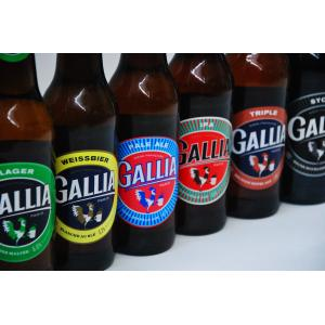 Guided visit at Gallia brewery