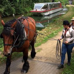 Croisière hors du temps sur le Canal de l'Ourcq