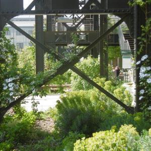 Le quartier La Chapelle et ses jardins