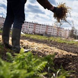 Découverte de la permaculture avec le chef jardinier de Zone Sensible - Ferme urbaine de Saint-Denis