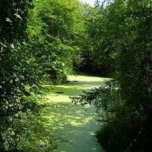 Le Parc de la Poudrerie de Sevran-Livry, un patrimoine à préserver