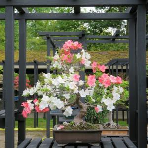La faune et la flore au Parc floral