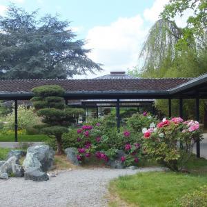 Visite nature dans le Parc Floral du Bois de Vincennes