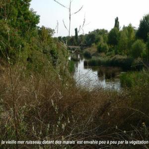 """Randonnée urbaine """"PR5"""" du Parc Georges Valbon"""