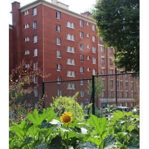 Une ferme urbaine dans un collège du XXème