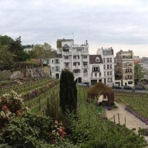 Balade viticole à Montmartre