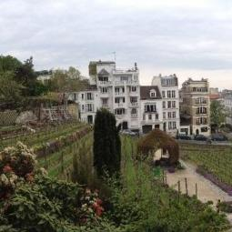 Heritage walk in the Montmartre vineyards