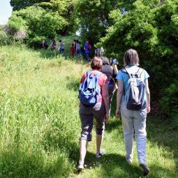 Cité-rando via les berges de Seine, de la cité-jardin Blumenthal à Orgemont