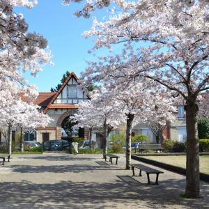 Les cités-jardins du Val Notre-Dame: entre art et patrimoine