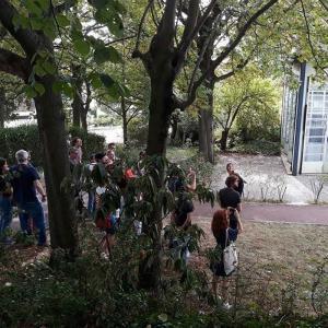 De Suresnes à Genevilliers, visite de deux cités-jardins