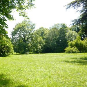 Visite paysagère et sensible du parc de la  Maison d'Art Bernard Anthonioz