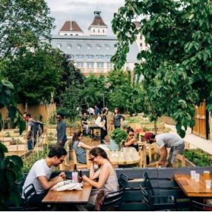 Apéro garden Party au Jardin 21* before le Cinéma en plein air