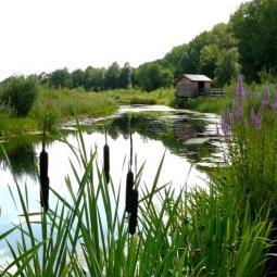 Croisière sur la Marne et balade sur la Haute Ile