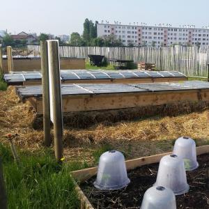La ferme urbaine de Saint-Denis