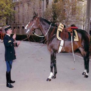 Les coulisses de la Cavalerie de la Garde Républicaine