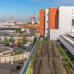 Sur les toits à la découverte d'une micro-ferme urbaine