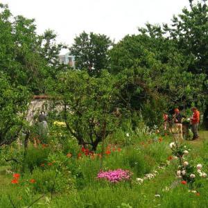 Le Parc des hauteurs à travers les cultures de Montreuil