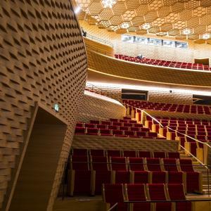 Visite des coulisses de la Seine Musicale -  (c)CD92 Olivier Ravoire