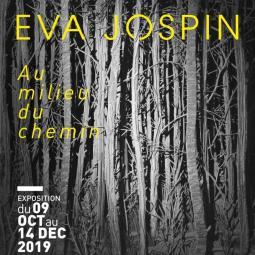 Exposition Au milieu du chemin d'Eva Jospin au Centre culturel Jean-Cocteau