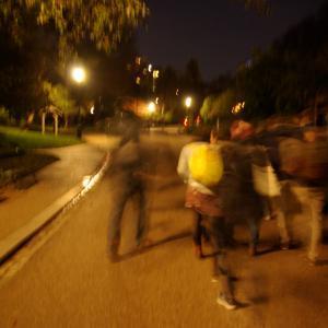 Balade nocturne - Aragon aux Buttes Chaumont