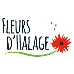 À la découverte de l'art floral à Lil'O sur l'Ile-Saint-Denis