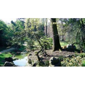 Visite du parc de Boulogne Edmond de Rothschild