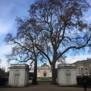 Les jardins de Bagatelle, du XVIIIe siècle à nos jours - Conférence virtuelle