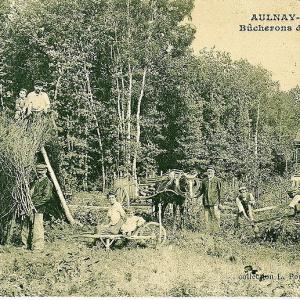 Foret régionale Bondy - Clichy sous bois / Aulnay sous bois