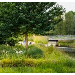 Parcs et jardins de Boulogne-Billancourt : mettez-vous au vert et au bleu ! - Balade virtuelle