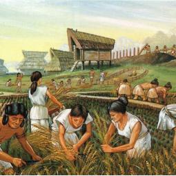 Se nourrir de ses champs, premières agricultures néolithiques en Seine-Saint-Denis et Val-de-Marne - Conférence virtuelle