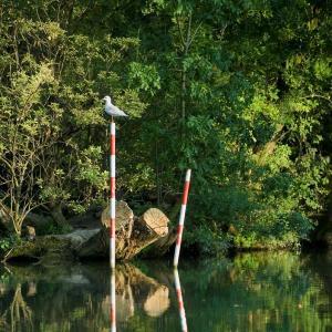 Croisière et découverte des iles de Créteil