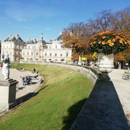 La nature à Paris, du Moyen-Âge à nos jours - Conférence virtuelle
