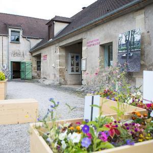eco musée