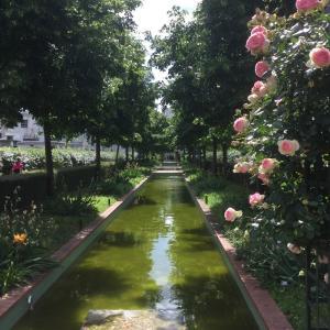 Histoire de la promenade plantée de la Bastille à Vincennes  - Conférence virtuelle