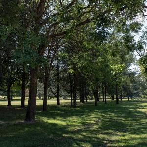 Parc-du-Tremblay©CDT94-A. Laurin-2020  (2)