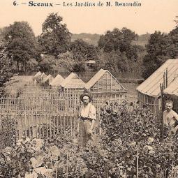 Un notaire philanthrope, les jardins ouvriers et les maisons Renaudin à Sceaux - Conférence virtuelle