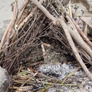 Exploiter son milieu pour produire du feu - archéosite de la Haute-Ile