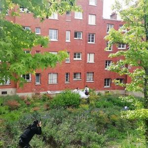 Rencontre Ville-Nature, utopie concrète au Pré-Saint-Gervais - Printemps des cités-jardins