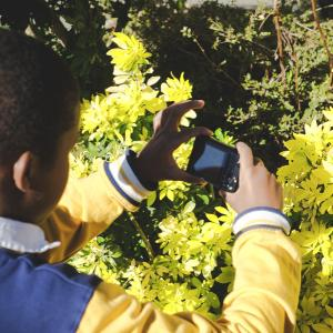 """Atelier jeune public """"Les arpenteurs photographes"""""""