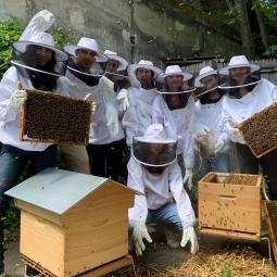 Initiation à l'apiculture durable & engagée au Parc de La Villette