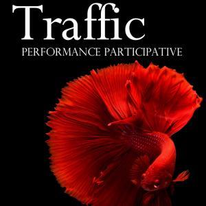 Performance participative Traffic au Musée d'art et d'histoire Paul Eluard de Saint-Denis