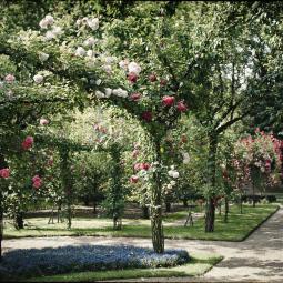 Jardins patrimoniaux et sauvegarde de la nature : des enjeux irréconciliables ?