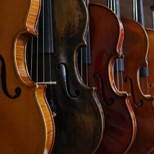 Concert Flottant -Entrez dans la danse - Orchestre Symphonique Divertimento