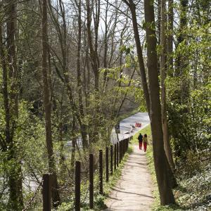 Ailleurs au bois de Montjean -  Promenade artistique à Fresnes