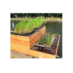 Atelier phyto-filtration de l'eau avec l'Urban Boat