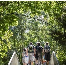 La balade des deux forêts, du Pont de Sèvres à Versailles - Jour 5