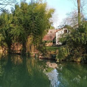 Inspiration artistique sur les bords de Marne à Créteil