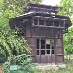 Visite de l'exposition coloniale et permaculture au jardin d'agronomie tropicale