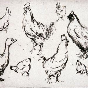 Balade-atelier en famille : les animaux - Journées du patrimoine 2021