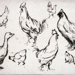 Balade-atelier en famille : les animaux - Journées du patrimoine